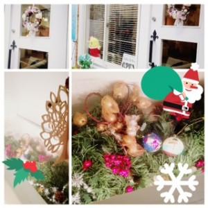 lagoon Christmas☆☆☆